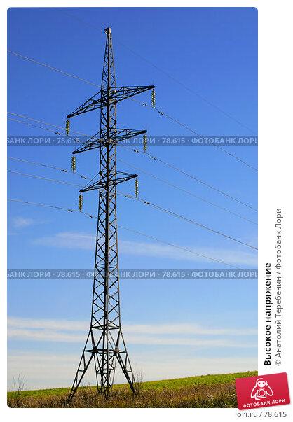 Высокое напряжение, фото № 78615, снято 11 августа 2007 г. (c) Анатолий Теребенин / Фотобанк Лори