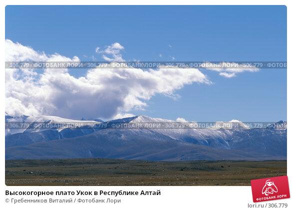 Высокогорное плато Укок в Республике Алтай, фото № 306779, снято 22 июня 2017 г. (c) Гребенников Виталий / Фотобанк Лори