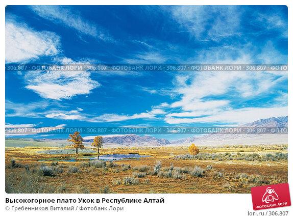 Купить «Высокогорное плато Укок в Республике Алтай», фото № 306807, снято 20 апреля 2018 г. (c) Гребенников Виталий / Фотобанк Лори