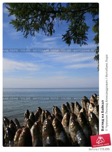 Взгляд на Байкал, фото № 115095, снято 25 июля 2007 г. (c) Чумилин Леонид Александрович / Фотобанк Лори