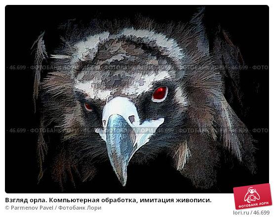 Взгляд орла. Компьютерная обработка, имитация живописи., иллюстрация № 46699 (c) Parmenov Pavel / Фотобанк Лори