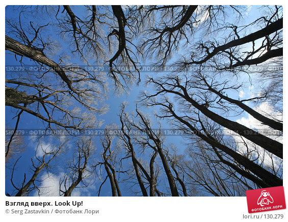 Взгляд вверх. Look Up!, фото № 130279, снято 6 мая 2006 г. (c) Serg Zastavkin / Фотобанк Лори