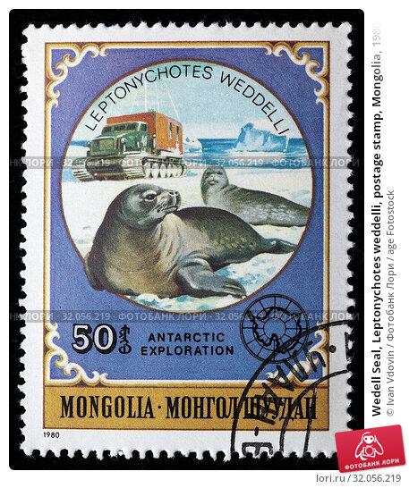 Wedell Seal, Leptonychotes weddelli, postage stamp, Mongolia, 1980. (2010 год). Редакционное фото, фотограф Ivan Vdovin / age Fotostock / Фотобанк Лори