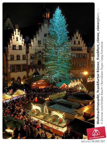Frankfurter weihnachtsbaum 2020