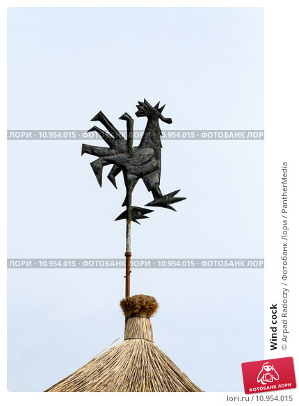 Wind cock. Стоковое фото, фотограф Arpad Radoczy / PantherMedia / Фотобанк Лори