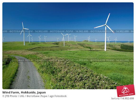 Купить «Wind Farm, Hokkaido, Japan», фото № 14902699, снято 19 июня 2018 г. (c) age Fotostock / Фотобанк Лори