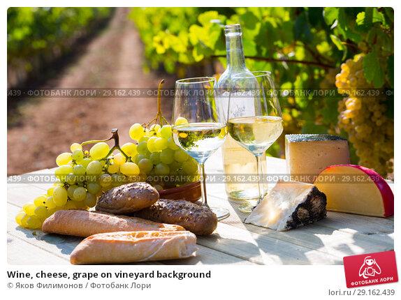 Купить «Wine, cheese, grape on vineyard background», фото № 29162439, снято 22 февраля 2019 г. (c) Яков Филимонов / Фотобанк Лори