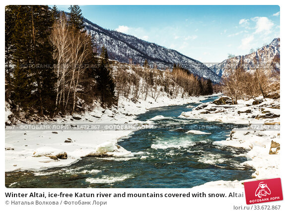 Купить «Winter Altai, ice-free Katun river and mountains covered with snow. Altai Republic, Russia», фото № 33672867, снято 28 января 2020 г. (c) Наталья Волкова / Фотобанк Лори