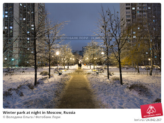 Winter park at night in Moscow, Russia, фото № 24842267, снято 17 ноября 2016 г. (c) Володина Ольга / Фотобанк Лори
