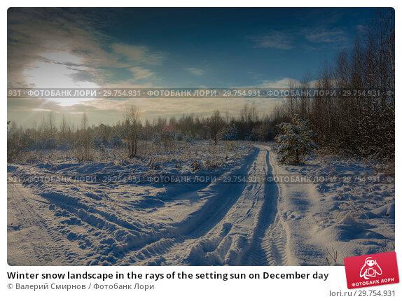 Купить «Winter snow landscape in the rays of the setting sun on December day», фото № 29754931, снято 29 декабря 2018 г. (c) Валерий Смирнов / Фотобанк Лори