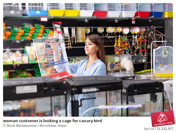 Купить «woman customer is looking a cage for canary bird», фото № 32232927, снято 21 ноября 2019 г. (c) Яков Филимонов / Фотобанк Лори