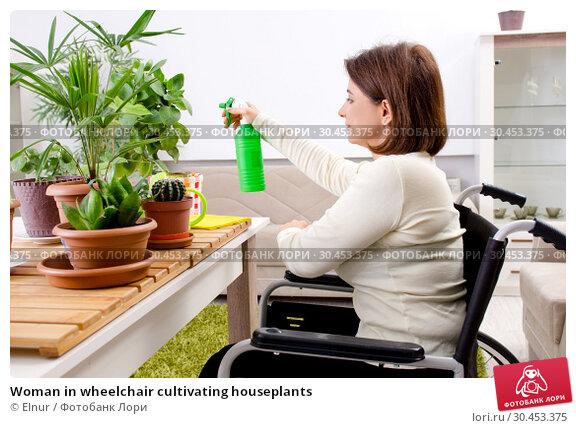 Woman in wheelchair cultivating houseplants. Стоковое фото, фотограф Elnur / Фотобанк Лори