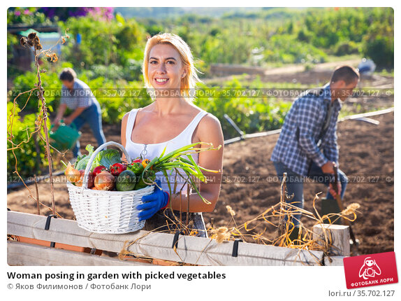 Woman posing in garden with picked vegetables. Стоковое фото, фотограф Яков Филимонов / Фотобанк Лори