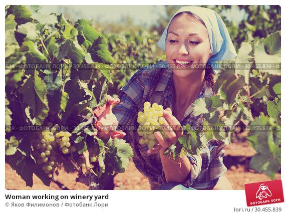 Woman working on winery yard. Стоковое фото, фотограф Яков Филимонов / Фотобанк Лори