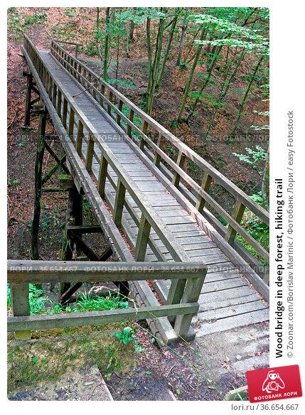 Wood bridge in deep forest, hiking trail. Стоковое фото, фотограф Zoonar.com/Borislav Marinic / easy Fotostock / Фотобанк Лори