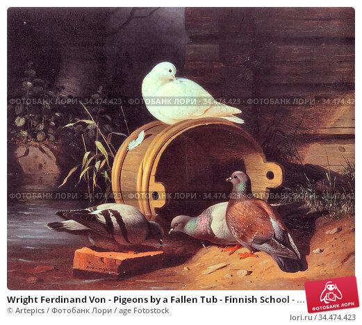 Wright Ferdinand Von - Pigeons by a Fallen Tub - Finnish School - ... Редакционное фото, фотограф Artepics / age Fotostock / Фотобанк Лори