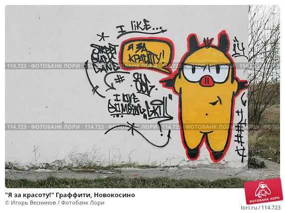 """""""Я за красоту!"""" Граффити, Новокосино, фото № 114723, снято 11 ноября 2007 г. (c) Игорь Веснинов / Фотобанк Лори"""