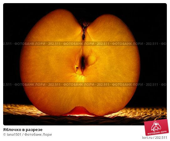 Купить «Яблочко в разрезе», эксклюзивное фото № 202511, снято 19 января 2008 г. (c) lana1501 / Фотобанк Лори