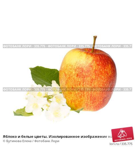 Яблоко и белые цветы. Изолированное изображение на белом фоне. Apple with flowers, фото № 335775, снято 24 июня 2008 г. (c) Бутинова Елена / Фотобанк Лори