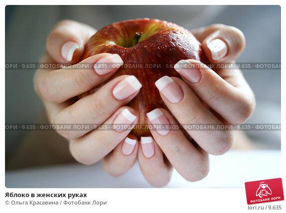 Яблоко в женских руках, фото № 9635, снято 13 июля 2006 г. (c) Ольга Красавина / Фотобанк Лори