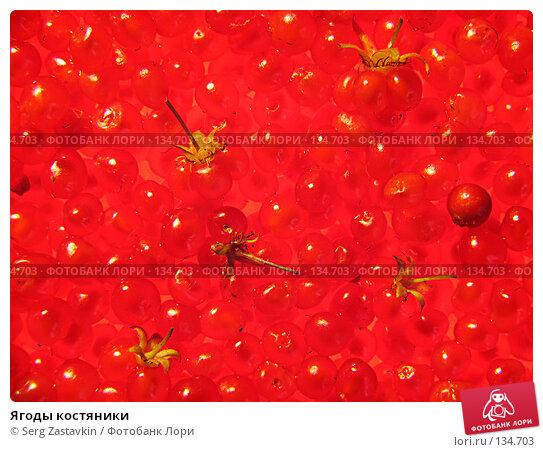 Купить «Ягоды костяники», фото № 134703, снято 30 июля 2005 г. (c) Serg Zastavkin / Фотобанк Лори