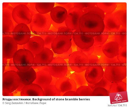 Купить «Ягоды костяники. Background of stone bramble berries», фото № 134711, снято 30 июля 2005 г. (c) Serg Zastavkin / Фотобанк Лори