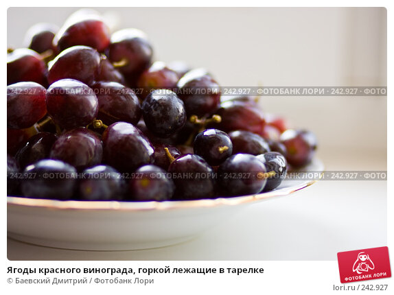 Ягоды красного винограда, горкой лежащие в тарелке, фото № 242927, снято 5 апреля 2008 г. (c) Баевский Дмитрий / Фотобанк Лори