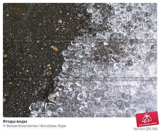 Ягоды воды, фото № 231163, снято 14 декабря 2005 г. (c) Филин Константин / Фотобанк Лори