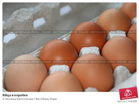 Яйца в коробке, фото № 114039, снято 8 ноября 2007 г. (c) Наталья Белотелова / Фотобанк Лори