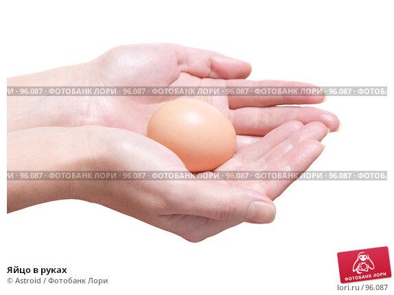 Купить «Яйцо в руках», фото № 96087, снято 23 ноября 2017 г. (c) Astroid / Фотобанк Лори