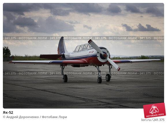 Як-52, фото № 241375, снято 26 мая 2017 г. (c) Андрей Доронченко / Фотобанк Лори
