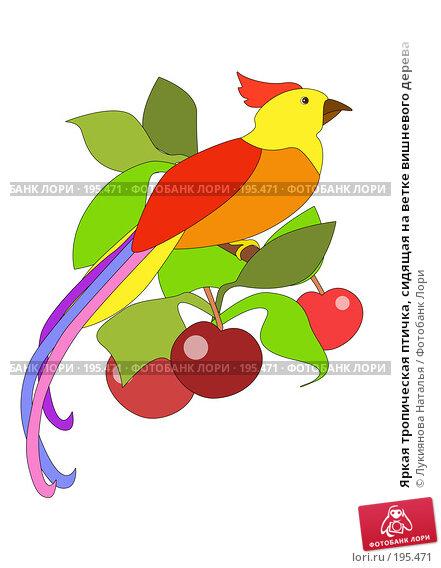 Купить «Яркая тропическая птичка, сидящая на ветке вишневого дерева», иллюстрация № 195471 (c) Лукиянова Наталья / Фотобанк Лори
