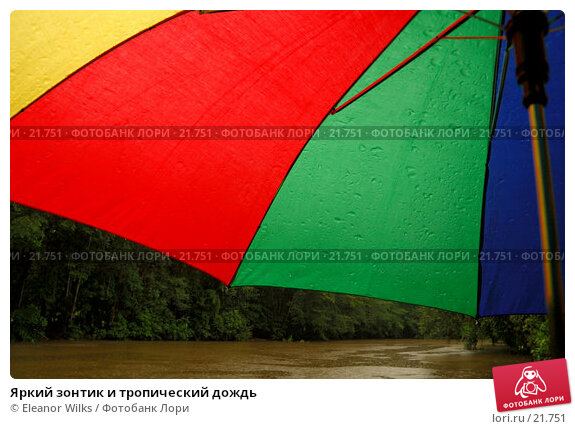 Купить «Яркий зонтик и тропический дождь», фото № 21751, снято 2 апреля 2007 г. (c) Eleanor Wilks / Фотобанк Лори