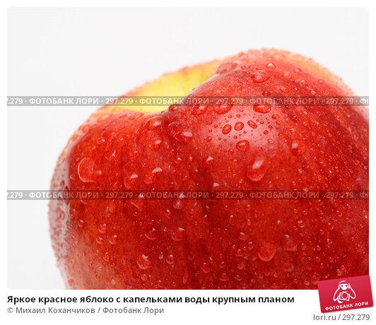 Яркое красное яблоко с капельками воды крупным планом, фото № 297279, снято 6 февраля 2008 г. (c) Михаил Коханчиков / Фотобанк Лори
