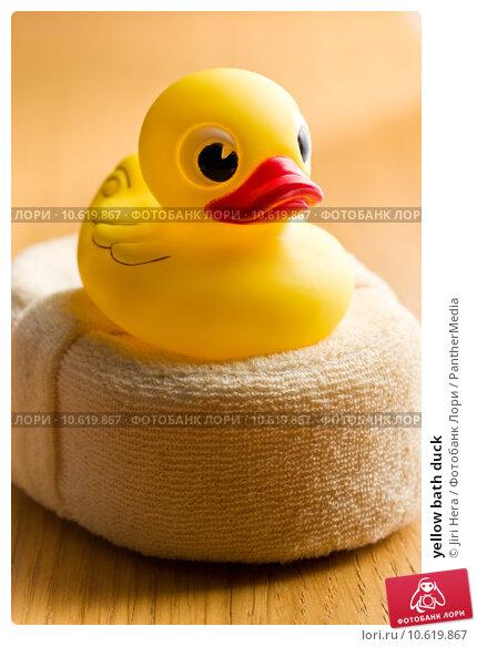 yellow bath duck . Стоковое фото, фотограф Jiri Hera / PantherMedia / Фотобанк Лори
