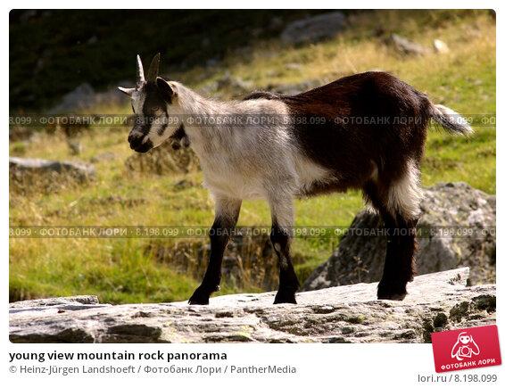 Купить «young view mountain rock panorama», фото № 8198099, снято 20 мая 2019 г. (c) PantherMedia / Фотобанк Лори