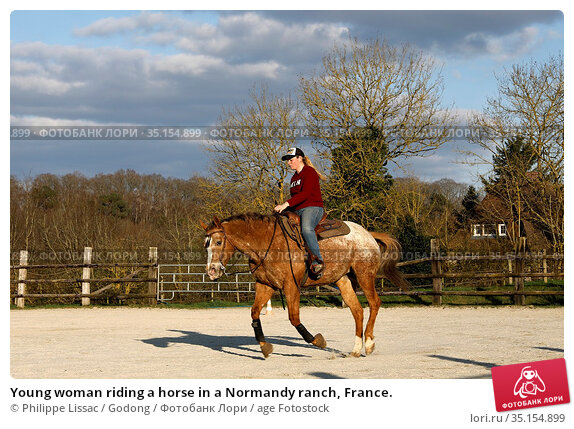 Young woman riding a horse in a Normandy ranch, France. Стоковое фото, фотограф Philippe Lissac / Godong / age Fotostock / Фотобанк Лори