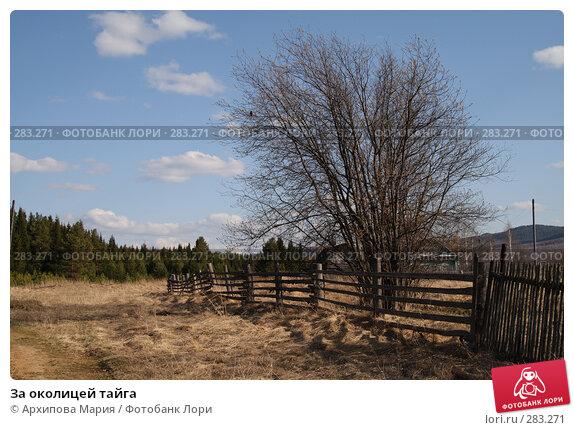За околицей тайга, фото № 283271, снято 10 мая 2008 г. (c) Архипова Мария / Фотобанк Лори