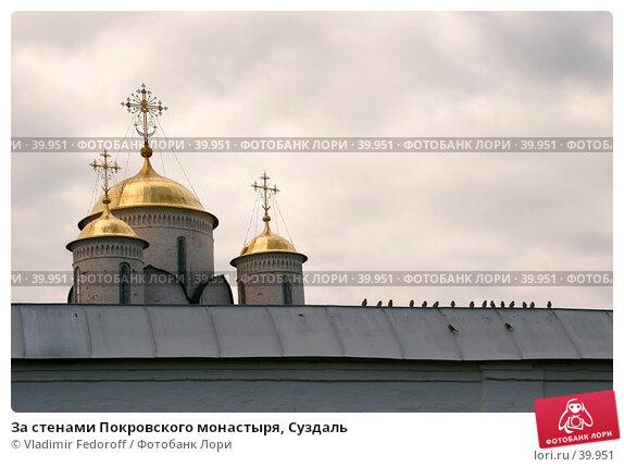 За стенами Покровского монастыря, Суздаль, фото № 39951, снято 13 августа 2006 г. (c) Vladimir Fedoroff / Фотобанк Лори