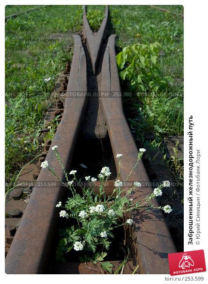 Заброшенный железнодорожный путь, фото № 253599, снято 16 августа 2007 г. (c) Юрий Синицын / Фотобанк Лори