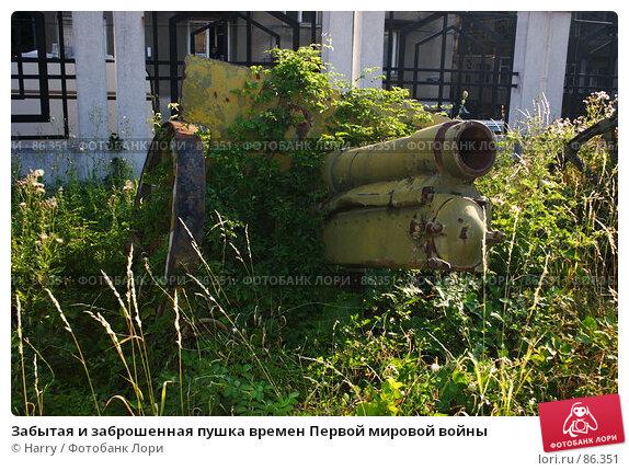 Забытая и заброшенная пушка времен Первой мировой войны, фото № 86351, снято 3 августа 2007 г. (c) Harry / Фотобанк Лори