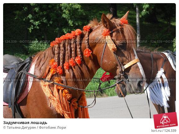 Задумчивая лошадь, фото № 124339, снято 22 июля 2007 г. (c) Татьяна Дигурян / Фотобанк Лори