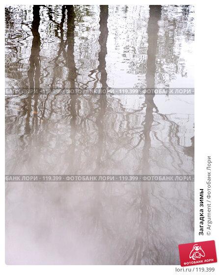 Купить «Загадка зимы», фото № 119399, снято 2 ноября 2006 г. (c) Argument / Фотобанк Лори