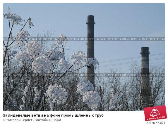 Заиндевелые ветви на фоне промышленных труб, фото № 6871, снято 11 марта 2006 г. (c) Николай Гернет / Фотобанк Лори