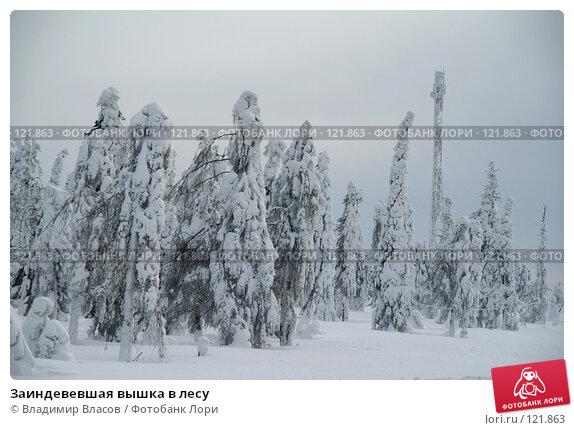 Заиндевевшая вышка в лесу, фото № 121863, снято 28 февраля 2007 г. (c) Владимир Власов / Фотобанк Лори