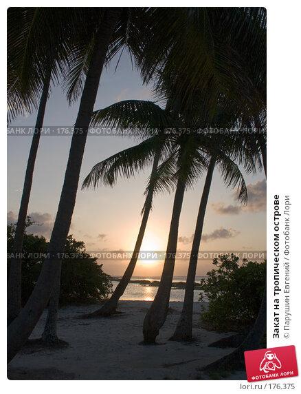 Закат на тропическом острове, фото № 176375, снято 29 октября 2016 г. (c) Парушин Евгений / Фотобанк Лори