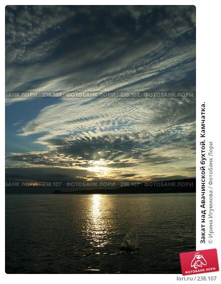 Закат над Авачинской бухтой. Камчатка., фото № 238107, снято 31 июля 2005 г. (c) Ирина Игумнова / Фотобанк Лори