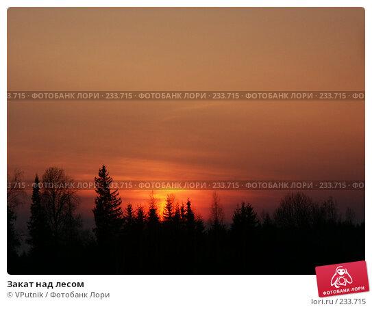 Закат над лесом, фото № 233715, снято 19 апреля 2004 г. (c) VPutnik / Фотобанк Лори