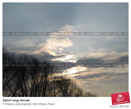 Закат над лесом, фото № 259399, снято 13 апреля 2008 г. (c) Равиль Шангараев / Фотобанк Лори