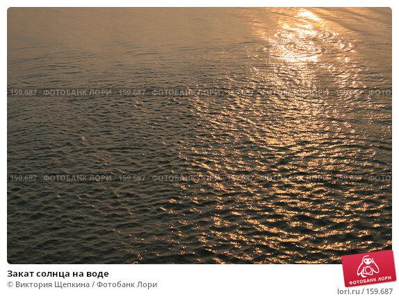 Закат солнца на воде, фото № 159687, снято 20 августа 2007 г. (c) Виктория Щепкина / Фотобанк Лори